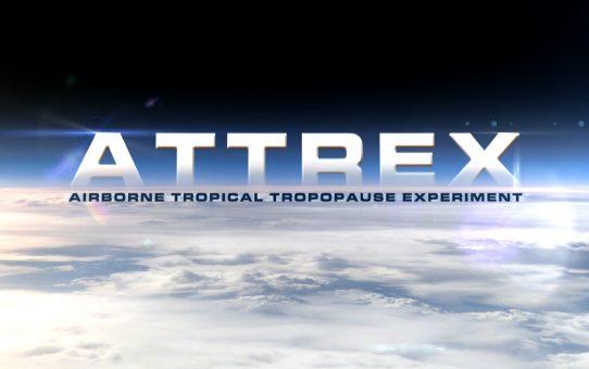 ATTREX_Miniatura